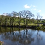 The river Warfe at Burnsall
