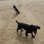 Beach time at St Annes